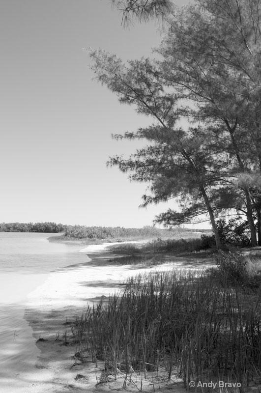 landscape -fort-de-soto -fl-2012-1 - ID: 13027907 © Andy Bravo