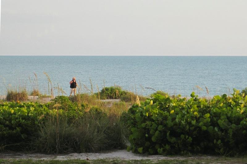 aa carol beach walk - ID: 13030084 © Mary Iacofano