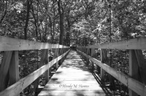 Suspension Bridge B&W