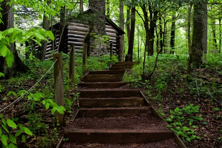 The Cabin Trail