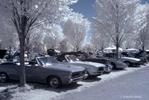 Classic Cars in IR