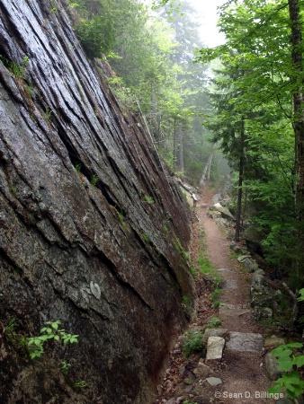 05/2012 Perpendicular Trail