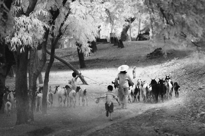 life at rural village