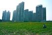 farming in china