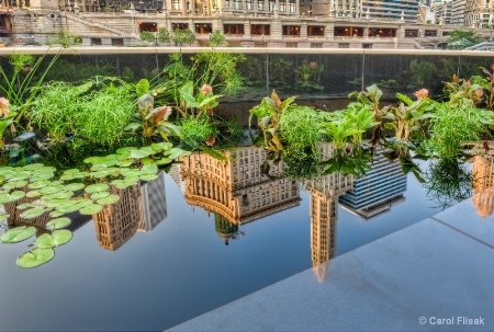 Chicago City Reflected
