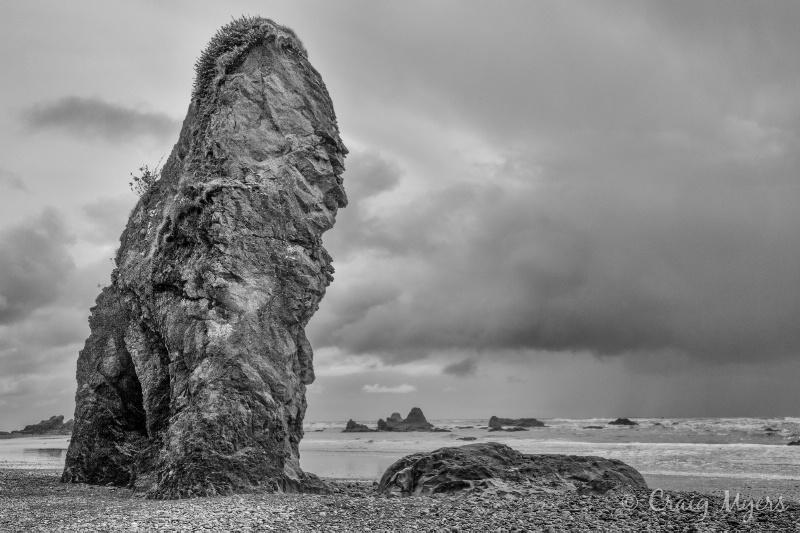 Beach Monolith, Olympic NP - ID: 13134357 © Craig W. Myers