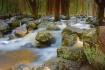 Bridalveil Creek,...