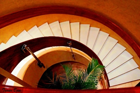 Curved Stairs.
