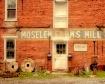 Moselem Farms