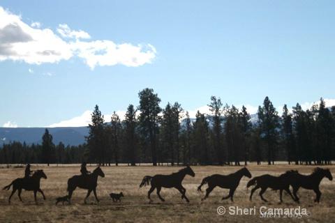 Iron Scluptures - Sisters, Oregon - ID: 13159780 © Sheri Camarda