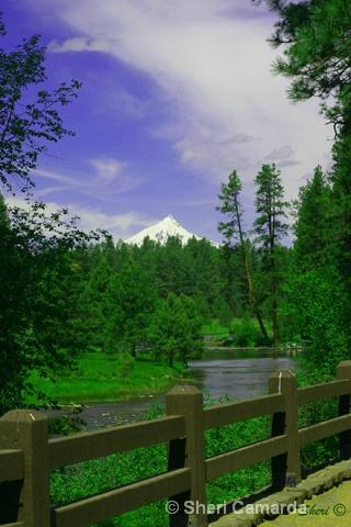 Head Waters of the Metolious River & Mt. Jefferson - ID: 13159785 © Sheri Camarda