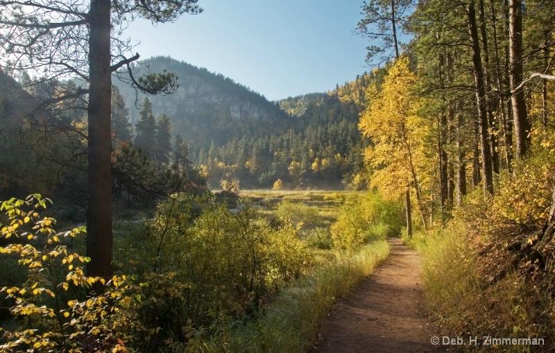 autumn early morning sunshine - ID: 13166703 © Deborah H. Zimmerman