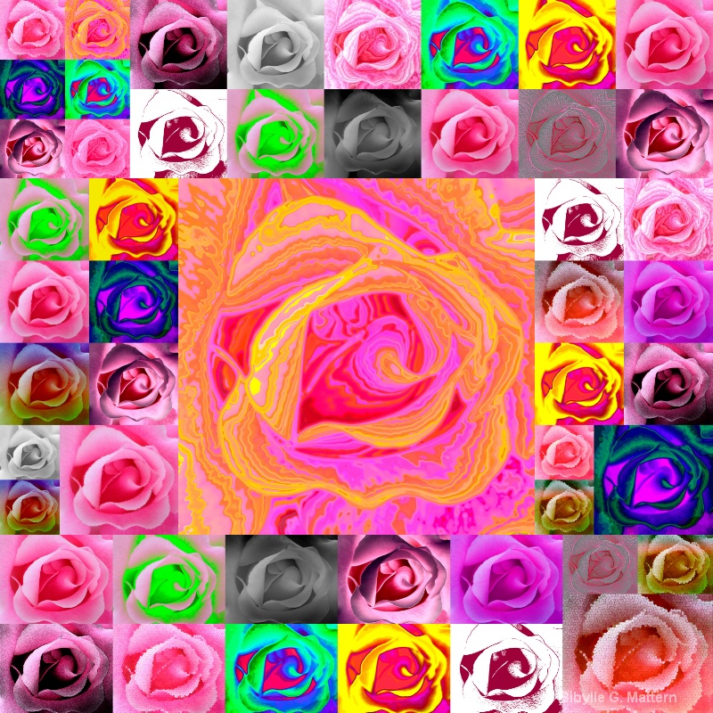 Photoshop filters: 50 roses - ID: 13167347 © Sibylle G. Mattern