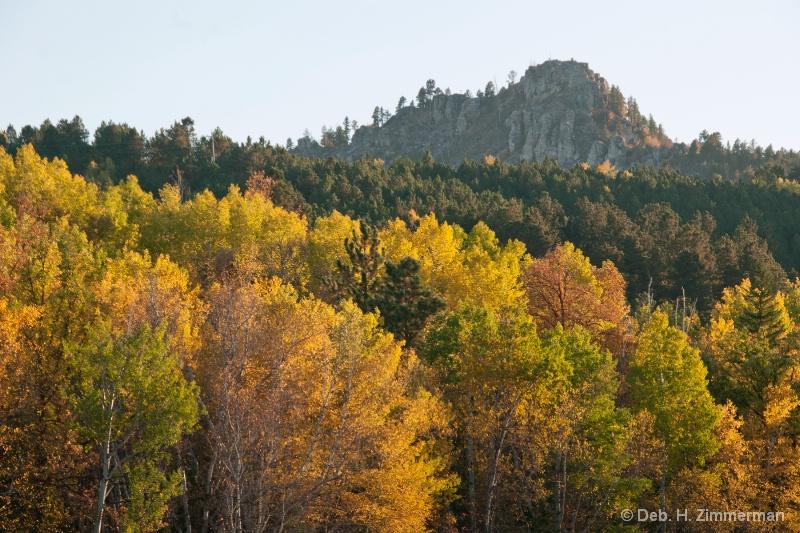 Coming into Deadwood's Autumn Color - ID: 13167477 © Deborah H. Zimmerman