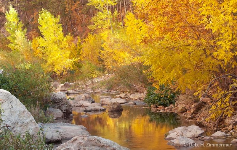 A Golden Turn in Boulder Creek - ID: 13167479 © Deborah H. Zimmerman
