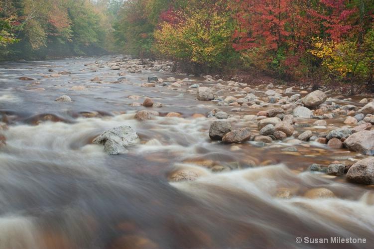 Swift River, NH 1148 - ID: 13181250 © Susan Milestone
