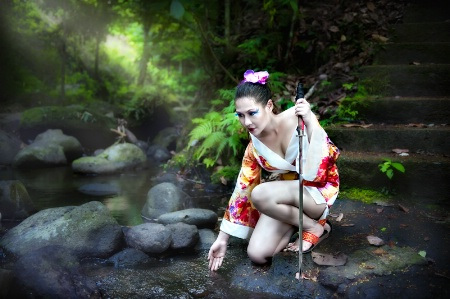 Warrior Geisha