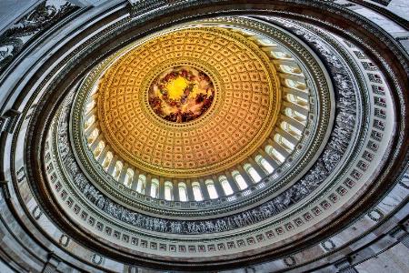 Washington Glory