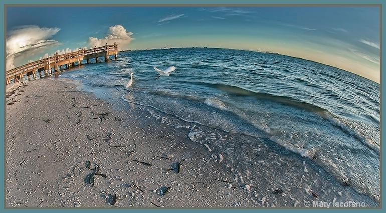 Sanibel Island Pier - ID: 13205660 © Mary Iacofano