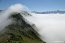 Mountain rolling fog