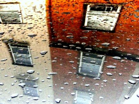 CARTOP RAINDROPS REFLECT