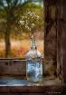 Bottle on Window ...