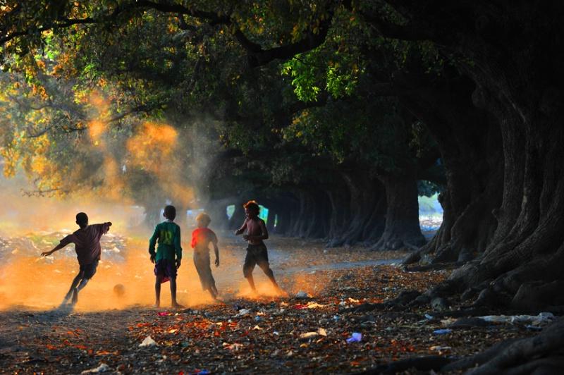 Golden scene - ID: 13231448 © Kyaw Kyaw Winn