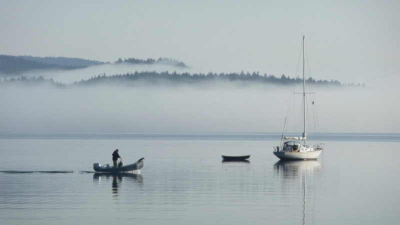 Morning in the Bay