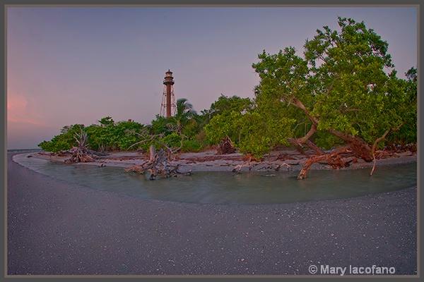 Lighthouse and Driftwood - ID: 13245983 © Mary Iacofano