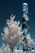 Obelisk Blue IR