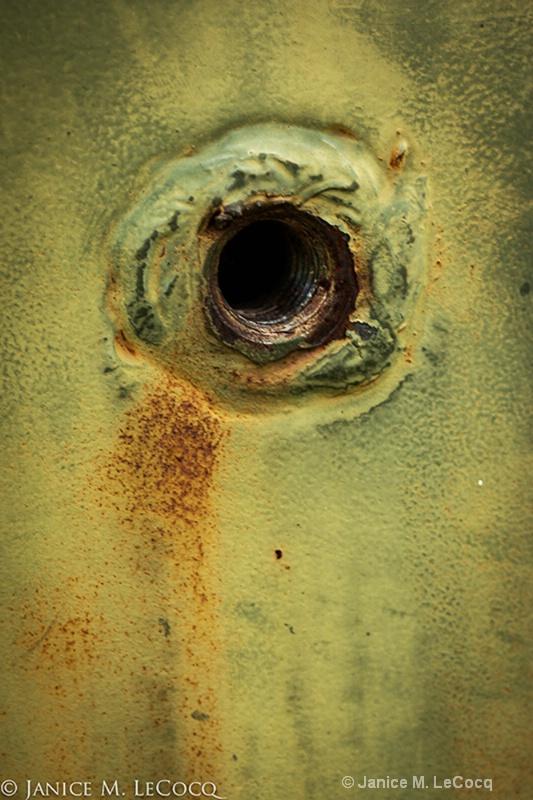 Steel Eye - ID: 13253211 © Janice  M. LeCocq