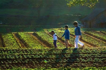 Farm Kids...