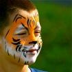 Tommy Tiger