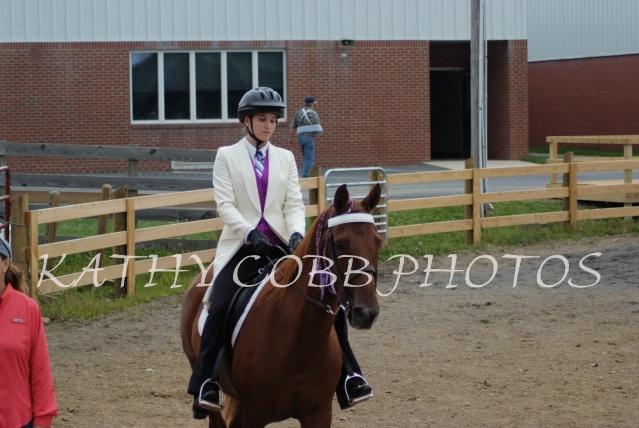 243 hc fair horse show 2012 - ID: 13282733 © Kathy Cobb