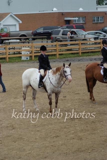 143 hc fair horse show 2012 - ID: 13282835 © Kathy Cobb