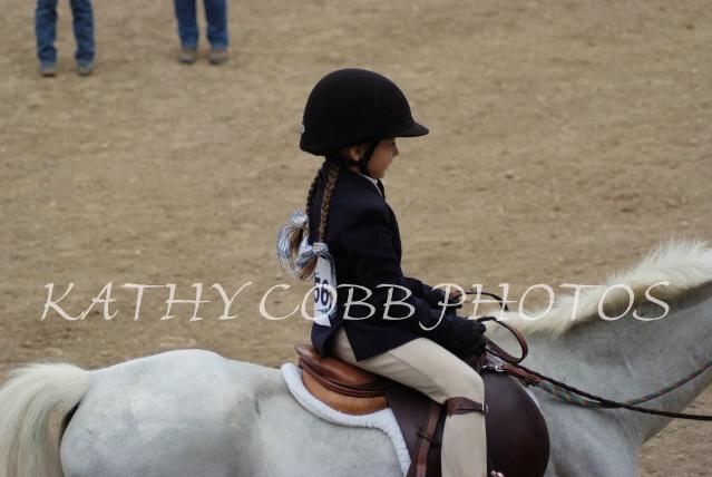 015 hc fair horse show 2012 - ID: 13282878 © Kathy Cobb