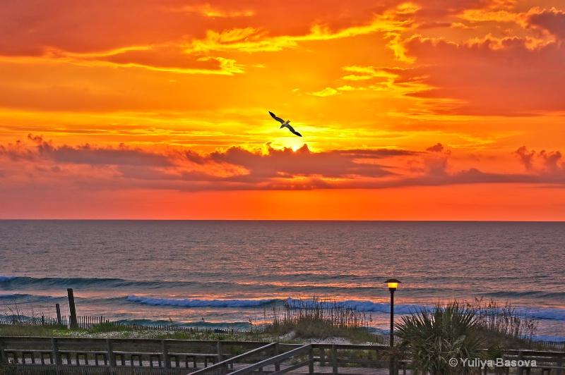 Carolina Beach at Sunrise, NC - ID: 13284639 © Yulia Basova