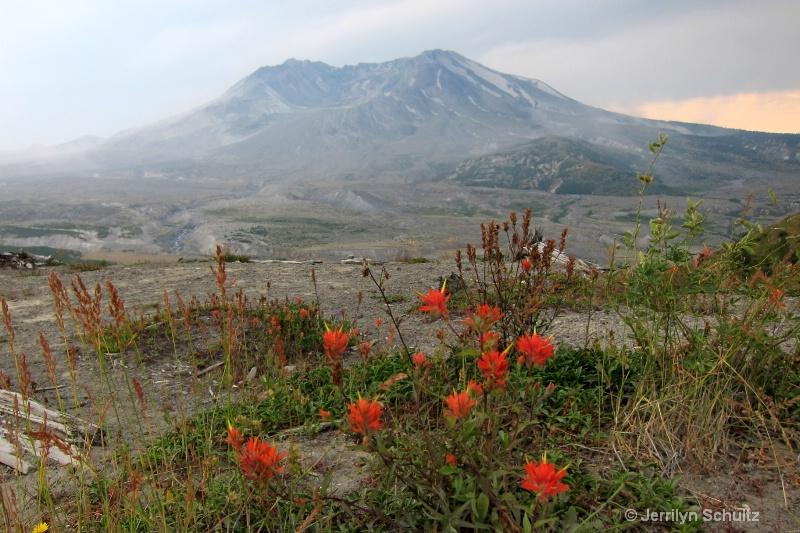 Mt. Saint Helens - ID: 13286941 © Jeri Schultz