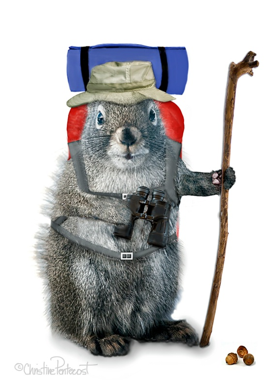 Hiking Squirrel