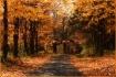 Fall on Urban Rao...