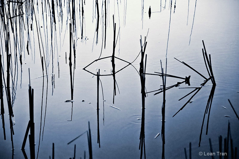 Calligraphy 2 - ID: 13350046 © Loan Tran