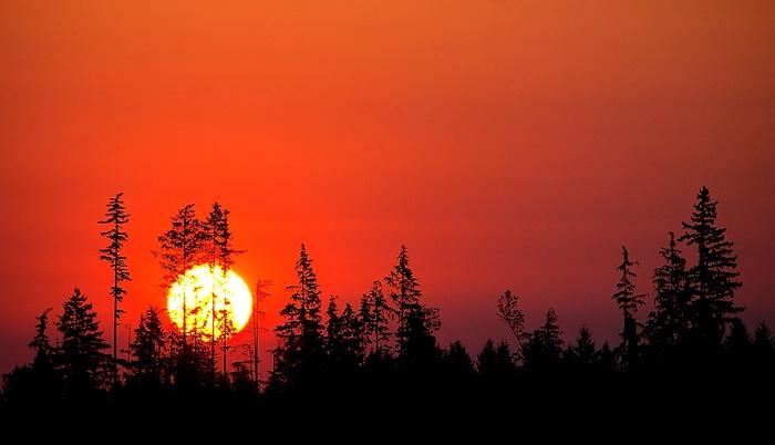 Sunrise - ID: 13352172 © William C. Dodge
