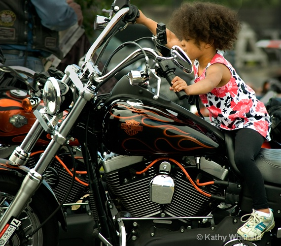 motorcycle rally 6 - ID: 13364025 © Kathy K. Whitfield