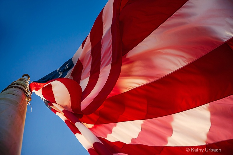 Looking Up to the Flag