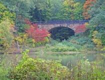 The Parapet Bridge