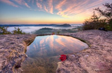 Awaiting a red leaf sunrise