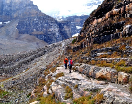 Trail to the Six Glaciers
