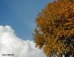 October in Denmar...