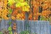 fall fence