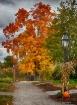 A Fall stroll in ...
